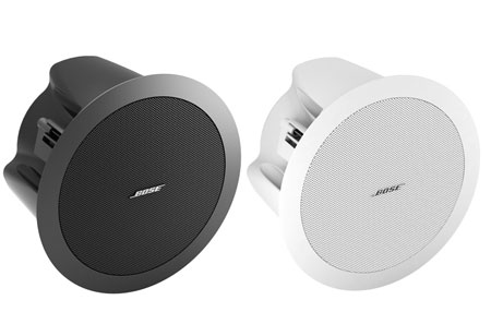 BOSE DS16F